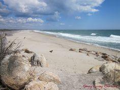 Beach Hill, S. Kingston, R.I.