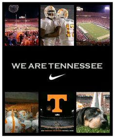 We are tennessee