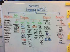 Tree Map (thinking map) for nouns in Kindergarten