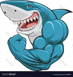White shark Vector Image by Andrey1005