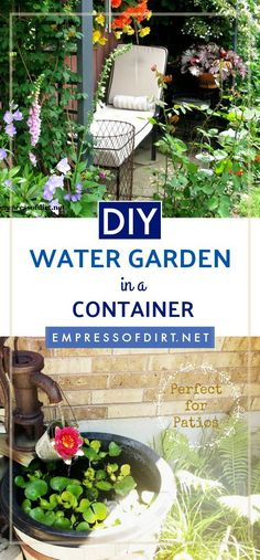 Container Flowers Small container water gardens are perfect for balconies and patios. You can grow a variety of aquatic plants and enjoy the sound of a small waterfall. This shows you what you need to create your own. Small Water Gardens, Container Water Gardens, Container Flowers, Container Gardening, Diy Garden Projects, Garden Tips, Garden Ideas, Garden Ponds, Pond Ideas