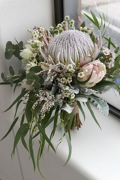 Native bridal bouquet. King protea, gum foliage, silver suede foliage, wax flower, blushing bride, gum nuts, heather, pale pink proteas, cream hypericum berries and grevillea. By Naomi Rose Floral Design Jerome Cole Photography