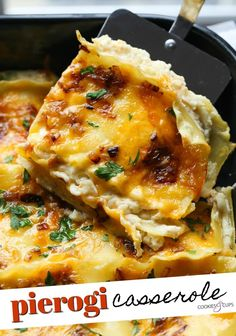 This Pierogi Casserole is a comforting casserole recipe with layers of lasagna noodles and cheesy potato pierogi filling. It's an easy and delicious weeknight dinner for the whole family! #pierogi #pierogicasserole #potatocasserole #pierogicasserolerecipe #potatocasserolerecipe #mashedpotatocasserole #mashedpotatoesrecipe #howtomakepierogi Pierogi Casserole, Potatoe Casserole Recipes, Pierogi Lasagna Recipe, Casserole Dishes, No Noodle Lasagna, Lasagna Noodles, Pierogi Filling, Easy Dinner Recipes, Dinner Ideas