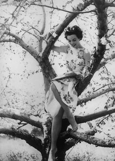 books0977:  Model reading in tree. Spring/summer Harper's Bazaar fashion image, July 1953. Photograph by Richard Avedon. Avedon did not conform to the standard technique of taking studio fashion photographs, where models stood emotionless and seemingly indifferent to the camera. Instead, Avedon showed models full of emotion, smiling, laughing, and, many times, in action in outdoor settings which was revolutionary at the time.