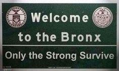 The get down Luke Alvez, The Get Down, Bronx Nyc, The Boogie, Set Me Free, Big Love, Criminal Minds, Back Home, New York City