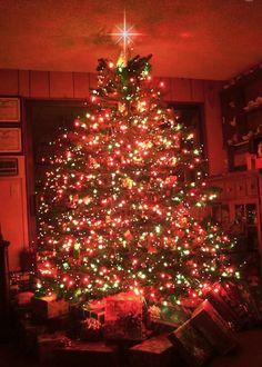 red christmas tree animation christmas tree decorated in red christmas animation - Red Christmas Tree Lights