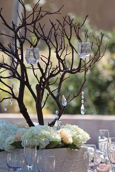Manzanita branches are becoming popular for table centrepieces for events such as weddings.
