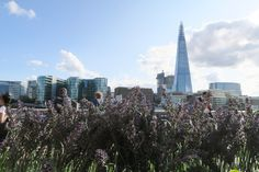 Pearls of Style   London The Coppa Club   The Shard   The Thames