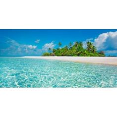 Global Gallery 'Palm Island, Maldives' by Frank Krahmer Framed Photographic Print on Canvas Size: 1 Best Travel Sites, Canvas Art, Canvas Prints, Canvas Size, Visit Maldives, Beach Pictures, Beach Pics, Nature Scenes, World Cultures