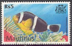 Mauritius stamp 2000 Amphiprion chrysogaster Mauritian anemonefish. Rarely photographed.