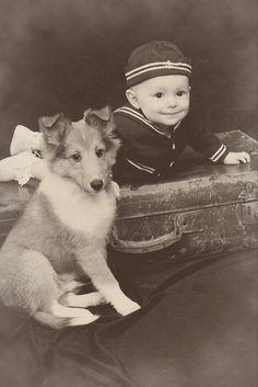 Baby and Shetland Sheepdog