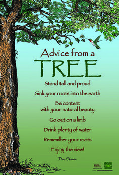 Advice from a Tree Stand tall and proud Sink your roots into the earth Be content with your natural beauty Go out on a limb Drink plenty of water Remember your roots Enjoy the view! by Ilan Shamir @Kaye T Nature