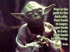 El miedo es el camino hacia el lados oscuro. El miedo lleva a la rabia. La rabia lleva al odio. El odio lleva al sufrimiento (Yoda)