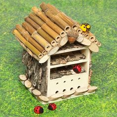 Wooden Bug House | Free Craft Ideas | Baker Ross You'll bug out over this fab idea – a handy little home for those creepy crawlies!