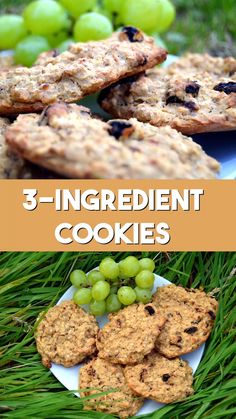 Healthy Cookies Recipe with banana oats and raisins Can be made gluten free No sugar no butter no flour and easy to make vegan veganrecipe vegancookie healthyrecipe healthytreat Healthy Cookie Recipes, Healthy Sweets, Healthy Baking, Healthy Drinks, Baby Food Recipes, Vegan Recipes, Cooking Recipes, Healthy Food, Party Recipes
