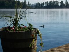 Big Moose Lake, ADKS