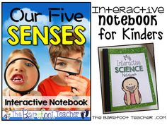 A blog for early elementary teachers and students that shares teaching resources, kids activities, crafts, freebies, & more!