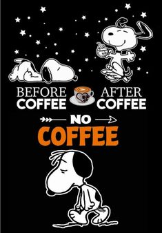 45 Ideas Funny Quotes And Sayings Humor Guys Snoopy Love, Snoopy And Woodstock, Snoopy Images, Snoopy Pictures, Funny Pictures, Charlie Brown Quotes, Charlie Brown And Snoopy, Peanuts Cartoon, Peanuts Snoopy