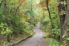 5  Short North Carolina Hikes You Need to Take This Year