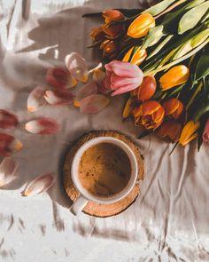 Aesthetics, World, Spring, Painting, Morning Coffee, Book, Bom Dia, Flowers, Good Morning
