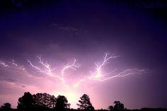 Lightning (Carla C. Photography)