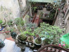 Hanoi 5 - Inside of Coffee Shop