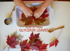 Fall Crafts: Glycerin Leaves // & iron leaves between wax paper sheets