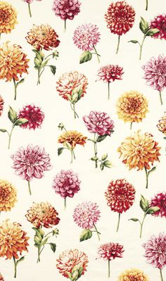 Floral fabric from Osborne & Little