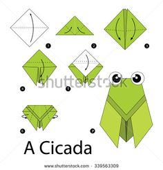 step by step instructions how to make origami A Cicada. - stock vector