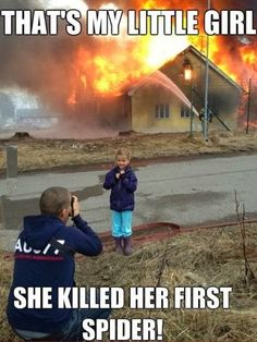 That's my girl. The spider killer!