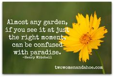 ✿Almost any #garden, if you see it at just the right moment can be confused with paradise.✿ #quote
