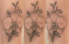 Orchid tattoo - might be my favorite one