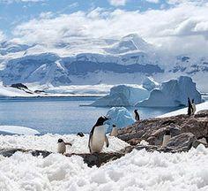 Fit Honeymoon Destinations: 2041 International Antarctic Expedition, Antarctica