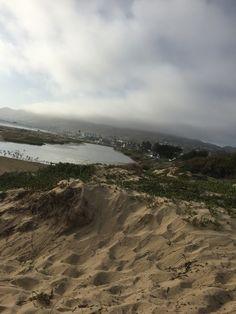Pismo Ocean Marsh