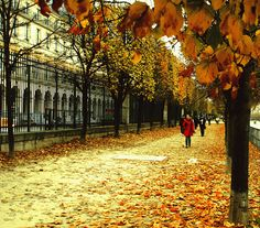 autumn in Paris | Autumn in Paris