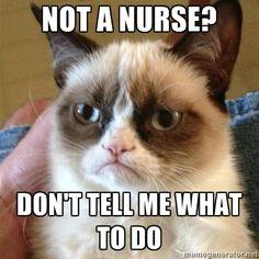 Grumpy Cat takes on nurses! #GrumpyCat #Memes #Nurses #LOL