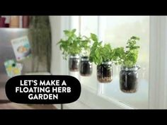 Bring your garden indoors: let's make a floating herb garden | Sugru