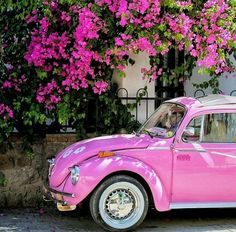 Imagem de pink, car, and flowers Maserati, Bugatti, Bmw Autos, Beetle Car, Vw Vintage, Cute Cars, Everything Pink, Vw Beetles, Retro Cars