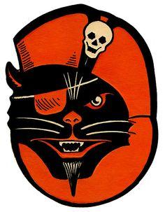 Halloween Black Cat Pirate by halloween_guy, via Flickr