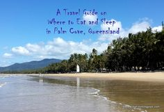 A Mini Travel Guide on Where to Eat and Sleep in Palm Cove, Queensland Palm Trees, Travel Guide, Street Art, Traveling, Scene, Restaurant, London, Eat, Mini
