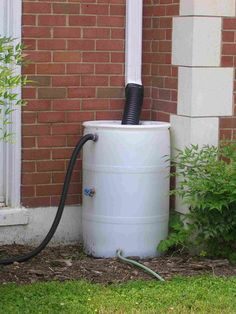 Rain Barreling Water Barrel System Barrels Gardening Tips