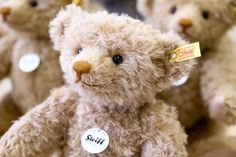 (National) Teddy Bear Day:  Celebrating the Warm & Cuddly Iconic Companions We Love to Hug