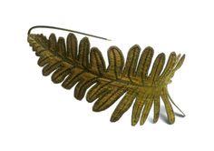Betsie Withey/TheFaerieMarket - Fern Leaf Headband - Golden Olive Green with Sage
