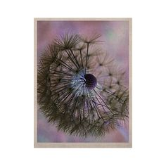 "Alison Coxon ""Dandelion Clock"" KESS Naturals Canvas (Frame not Included)"