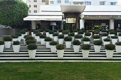 Delano Hotel, Miami Beach, FL, USA - Martha Schwartz Partners