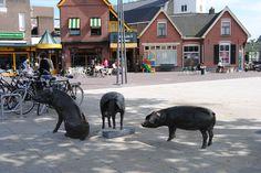 Holten, The Netherlands. Joyce Stolte