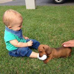 i gots your foot... i gonna eat it up (grrrrr!)