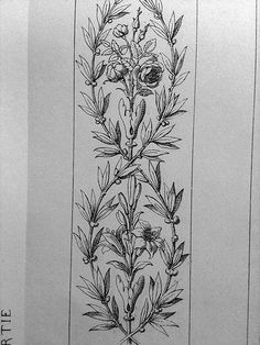 Ornament Drawings – Deanna M. Wall Painting Decor, Painting Hacks, Drawing Furniture, Art Nouveau Illustration, Ornament Drawing, Antique Chinese Furniture, Paper Crafts Origami, Decorative Panels, Floral Illustrations