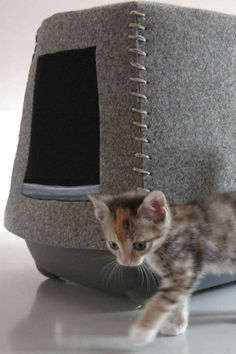 Heb je een hippe kitten, kat, kater of poes dan hebben wij een bijzondere design kattenbak voor je gevonden. Een prachtige vilten kattenbak en een krabpaal in 1.Een behaaglijke bak voor je kat en een modebewuste bak voor het baasje. www.molitli.nl