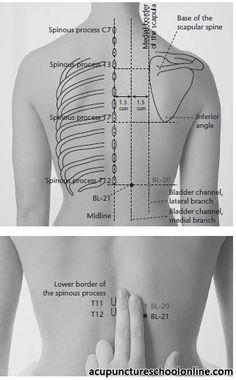 (BL-21) Stomach Shu WEISHU -1